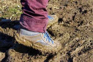 https://pixabay.com/en/earth-wet-earth-mud-ground-1280278/