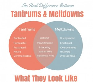 tantrums meltdowns